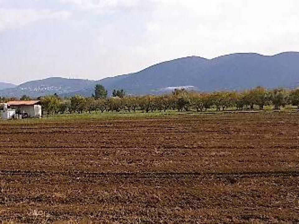 2011_11_04_13-52 Αγρός