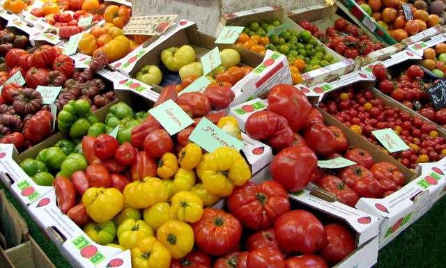 Εικόνα 2: Τομάτες υπάρχουν σε πολύ μεγάλη ποικιλία μεγεθών και χρωμάτων. Καιρός είναι να τις γνωρίσουμε!