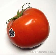 Super Market Tomato