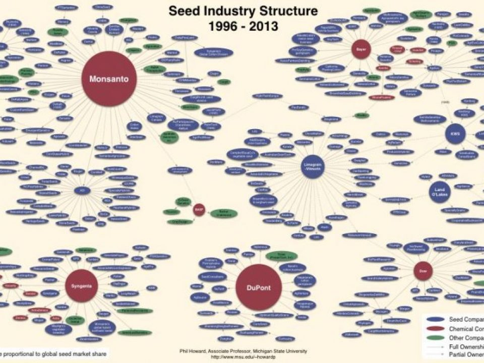 Seed industry structure